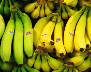 """Yes, I Have No Bananas,"" by Sharon Mollerus, by CC BY 4.0/cropped from original, https://www.flickr.com/photos/clairity/143368932/in/photolist-dENA9-dYQqDQ-4B5Mk3-ojNjx-5sizGN-81FtLe-81JCL1-kQSC61-oJVhV1-4SjDw1-ewMQN-81JzpW-pUFmF-7Pv1mX-oMFPSQ-8dLYYf-8KfSXc-6wF7Fz-7ro5mA-8ukopw-5ZqoeP-3dsk75-3dsjDE-foW68-fgD5i-yBNSqL-8ZiMF9-LqY3-9312wj-i7efdK-i2YNZG-c57o9b-yutk1J-wnCWV6-wntWD3-xjv9xx-x2Tvc9-x2TsZL-8dLYGh-8YQxTf-JAPjG-9scJsj-7jbDGz-5BXWoZ-9L5Fxu-qbEcxi-yQzey-8SvZtZ-4Gu4ZE-51j7Hp"